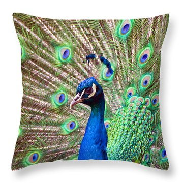 Landscape Peacock Throw Pillow