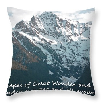Landscapes Of Great Wonder  Throw Pillow