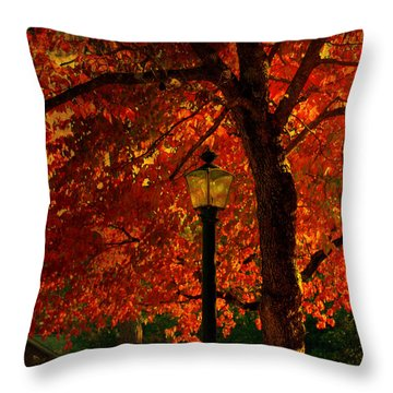 Lantern In Autumn Throw Pillow