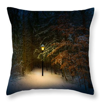 Lantern In The Wood Throw Pillow