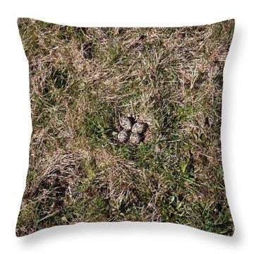 Lapwing Nest Throw Pillow