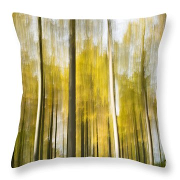 Larch Grove Blurred Throw Pillow by Anne Gilbert