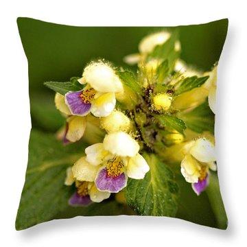 Throw Pillow featuring the photograph Large Flowered Hemp-nettle by Liz  Alderdice