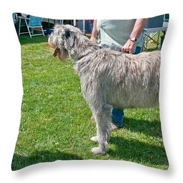 Large Irish Wolfhound Dog  Throw Pillow