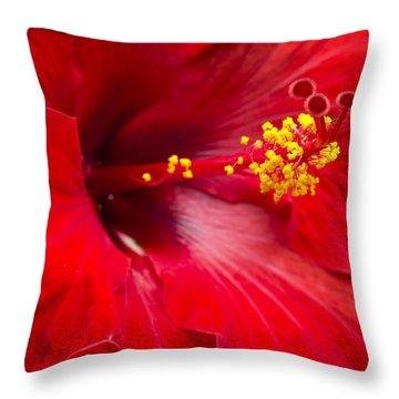 Large Red Hibiscus Throw Pillow by Leigh Anne Meeks