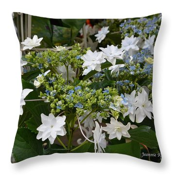 Throw Pillow featuring the photograph Shooting Star Bouquet by Jeannie Rhode