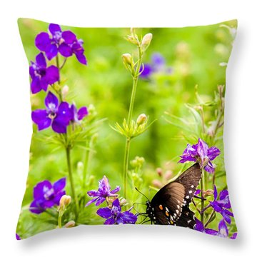 Larkspur Visitor Throw Pillow by Melinda Ledsome