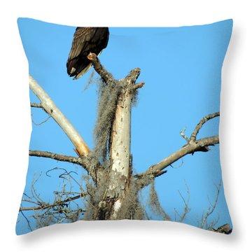 Larry Buzzard Vulture Throw Pillow
