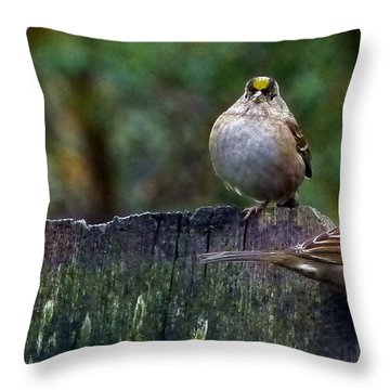 Larry Moe And Curly Throw Pillow