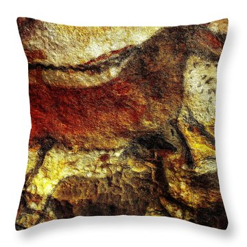 Throw Pillow featuring the photograph Lascaux II No. 1 - Horizontal by Jacqueline M Lewis