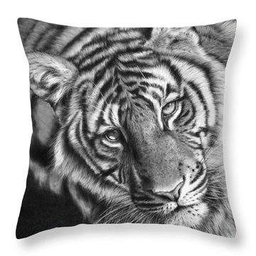 Last Chance To See Throw Pillow