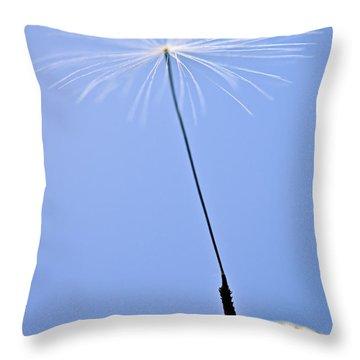 Last Dandelion Seed Throw Pillow by Elena Elisseeva