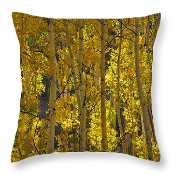 Last Dollar Aspens Throw Pillow