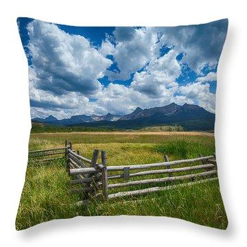 Last Dollar Ranch Throw Pillow