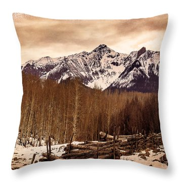 Last Dollar Road Winter Throw Pillow