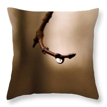 Last Drop Throw Pillow by Photographic Arts And Design Studio