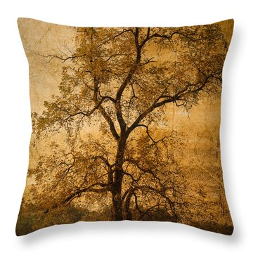 Last Fall Throw Pillow by Lena Wilhite