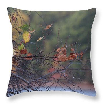 Throw Pillow featuring the photograph Last Leaves by Vadim Levin