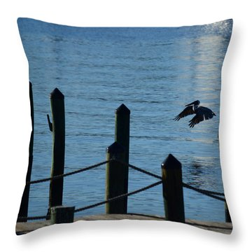 Last Light Flight Throw Pillow