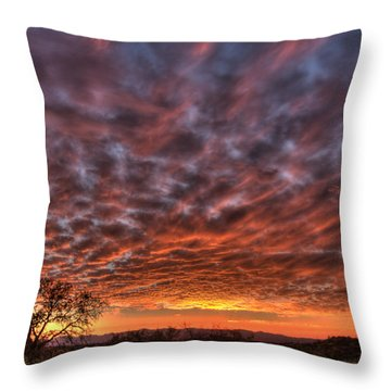 Last Light In Oracle Throw Pillow