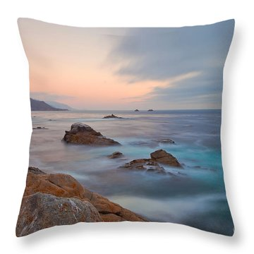 Throw Pillow featuring the photograph Last Light by Jonathan Nguyen
