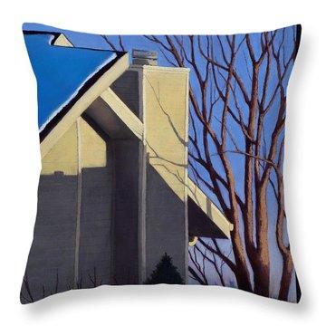 Last Light Last Snow Throw Pillow by Xenia Sease