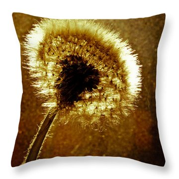 Last Light Of Day Throw Pillow by Bob Orsillo
