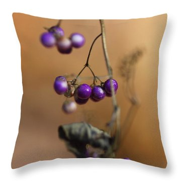 Last Of The Berries Throw Pillow