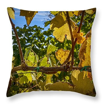 Last Of The Harvest Throw Pillow by David Cote