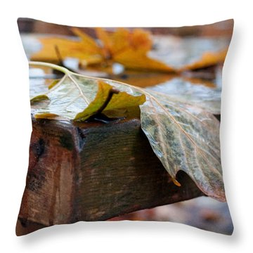 Last Of The Leaves Throw Pillow by Gwyn Newcombe