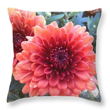 Last Of The Summer Throw Pillow by Denyse Duhaime