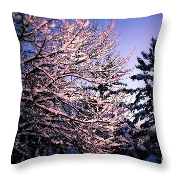 Last Peek Of Winter Sun Throw Pillow