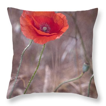 Last Poppy Throw Pillow by Guido Montanes Castillo
