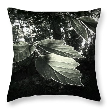Last Rays II Throw Pillow