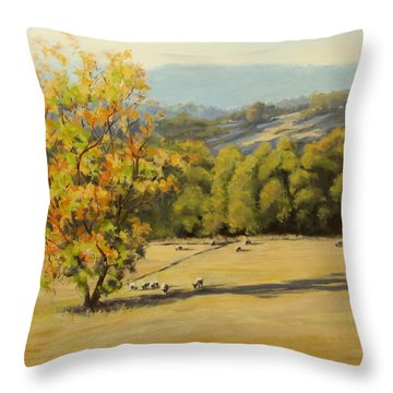 Last Rays Throw Pillow by Karen Ilari