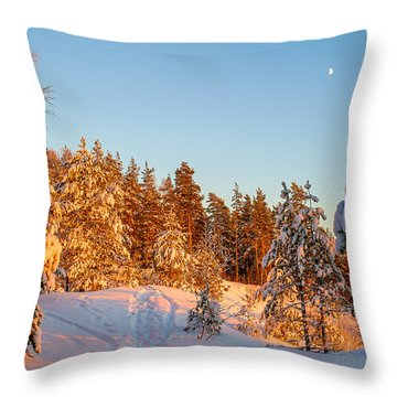 Last Rays Of Light In The Winter Forest Throw Pillow