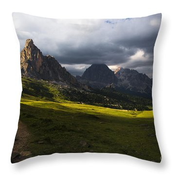 Last Rays Throw Pillow by Yuri Santin