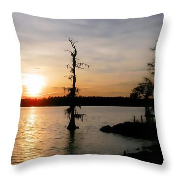 Last Sunset Of 2012 Throw Pillow by Victor Montgomery