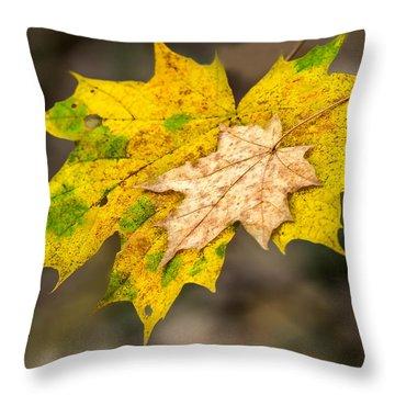 Last Support - Featured 3 Throw Pillow by Alexander Senin