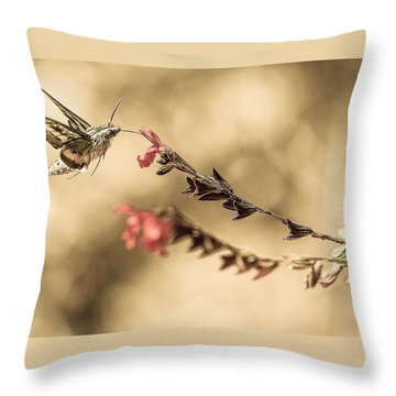 Last Thoughts Throw Pillow by Cecil K Brissette