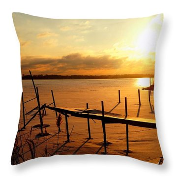 Last Winter ? Throw Pillow