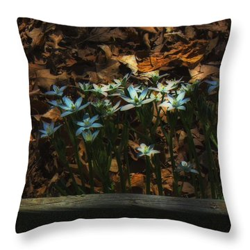 Last Year's Leaves Throw Pillow