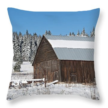 Latah Co. Barn Throw Pillow