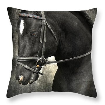 Latcho's Shadow  Throw Pillow by Fran J Scott