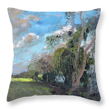 Late Afternoon By Niagara River Throw Pillow by Ylli Haruni