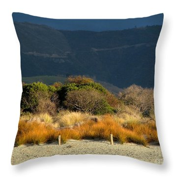 Late Afternoon Colours Throw Pillow