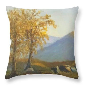 Late Afternoon Glow Throw Pillow