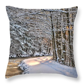 Late Afternoon In The Snow Throw Pillow