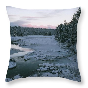 Throw Pillow featuring the photograph Late Afternoon In Winter by David Porteus