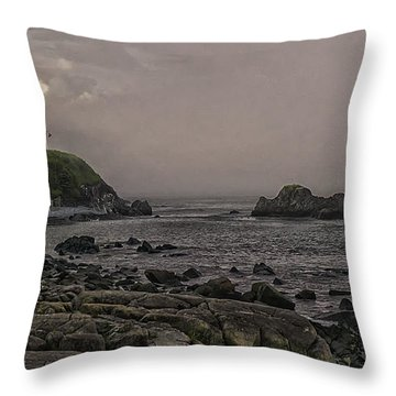 Throw Pillow featuring the photograph Late Afternoon Sun On West Quoddy Head Lighthouse by Marty Saccone